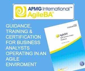 Agile Business Analyst